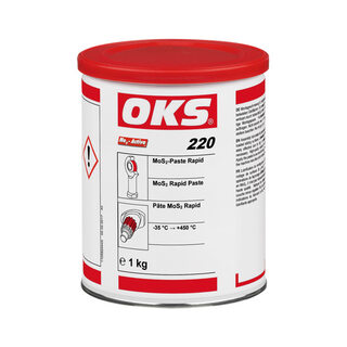 OKS 220 - MoS₂-Paste Rapid
